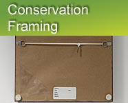 Conservation Framing