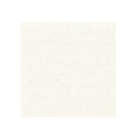 Hayseed (textured off white) pack of 10 (SC8065DG)